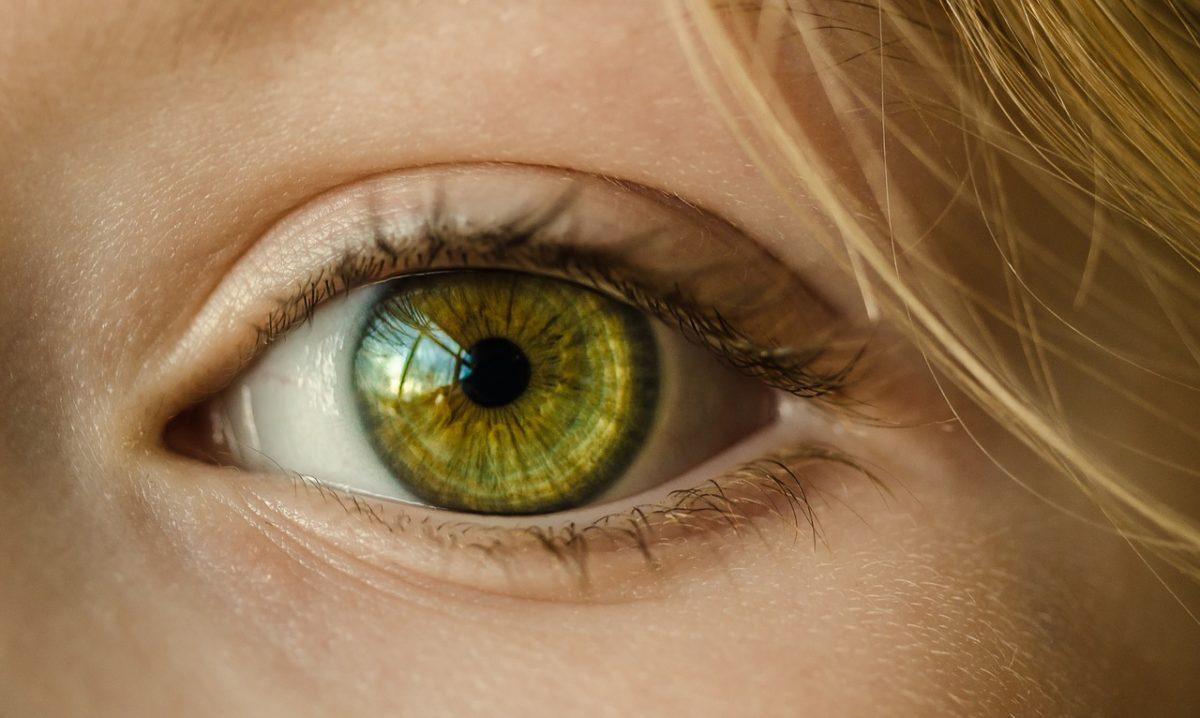 Oczy to charakterystyczny organ. To dokładnie dzięki nim odczuwamy.